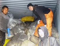Arnold Alfred, Paul Jenson und Clint Teeluk vom unteren Yukon in Alaska laden gesammelte Stellnetze zum Verschiffen in einen Container